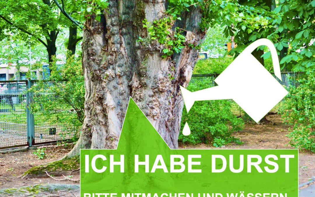Wasser für die Bäume – mitmachen!